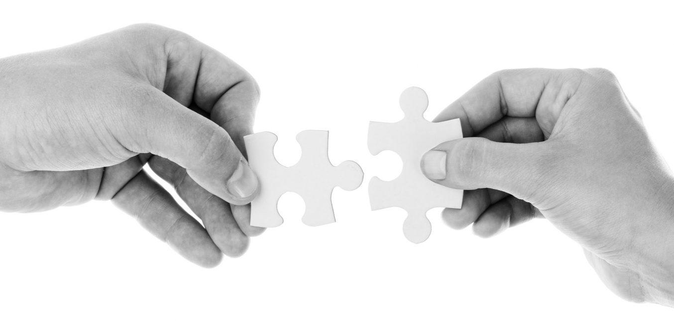 CO-BRANDING. La nueva estrategia empresarial