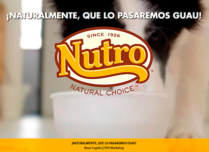• TPH Marketing: Mejor campaña de promoción